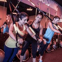 Orangetheory Fitness Egalia
